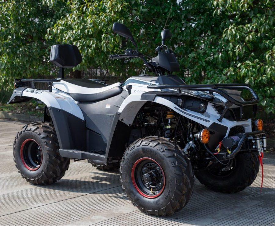 ATV Linhai 200 T3b 2